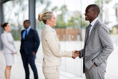 Business people handshaking. Professional business people handshaking in modern office royalty free stock image
