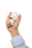 Business people holds bulb Royalty Free Stock Images