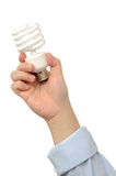 Business people holds bulb Stock Photos