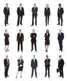 Business people, managers, executives. Isolated on white background royalty free stock photo
