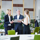 Business people in office talking with files Royalty Free Stock Photography
