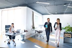 Business people in the office working. Royalty Free Stock Photo