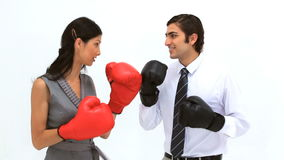 Business people playing with boxing gloves Royalty Free Stock Image