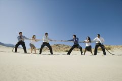 Business People Playing Tug Of War In The Desert. Side view of a group of multiethnic business people playing tug of war in desert Stock Photos