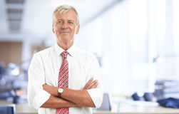 Business people portrait royalty free stock photos