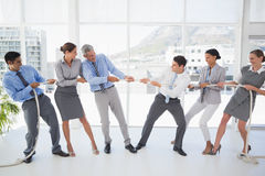 Business people pulling rope Royalty Free Stock Image