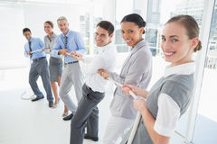 Business people pulling rope Stock Photos