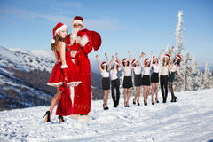 Business people selebrating christmas corporate Royalty Free Stock Photos