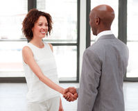 Business people shaking hands in agreement Stock Images