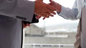 Business people shaking hands by large window. In the office stock video footage