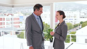 Business people shaking hands in office. Video of business people shaking hands in office stock footage