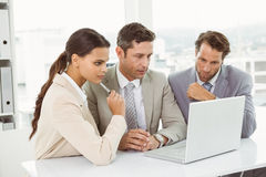 Business people using laptop in office Royalty Free Stock Photography