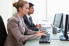 Business people working with computers royalty free stock image