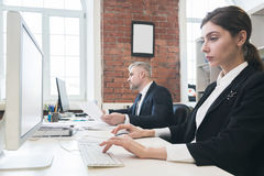 Business people working with computers Royalty Free Stock Images
