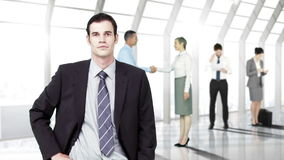 Business people working stock video footage