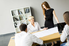 Business people working on plans Stock Photography