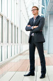 Business person Royalty Free Stock Image