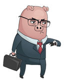 Business Pig Stock Photo