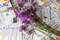 Business planner on financial income, dollar and business diagrams on financial reports with coins and purple flowers. Work and p royalty free stock photos
