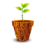 Business plant grow in brown pot Royalty Free Stock Photo
