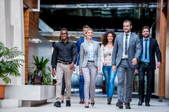Business poeple group. Young multi ethnic business people group walking standing and top view Stock Photos