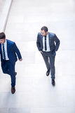 Business poeple group. Young multi ethnic business people group walking standing and top view Royalty Free Stock Image