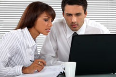 Business professionals working together Royalty Free Stock Images