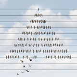 Business Pyramid. Concept and hierarchy structure symbol as a multilevel marketing scheme with an organized group of birds on a wire with other bird recruit Stock Images