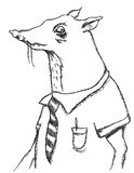Business Rat. A hand drawn rat character in business clothing for use in a bad business concept or the rat race Royalty Free Stock Photo