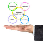 Business Requirements. Presenting diagram of Business Requirements royalty free stock image