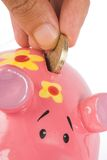Business savings - piggy bank Royalty Free Stock Photo