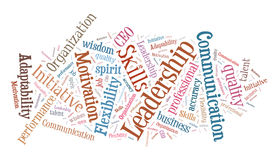 Business skills. Word cloud (brown and blue color Royalty Free Stock Photo