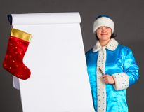 Business Snow Maiden Stock Photos