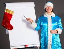 Business Snow Maiden Royalty Free Stock Image