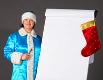 Business Snow Maiden Stock Photography