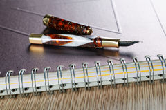 Business still life with a fountain pen Royalty Free Stock Photo