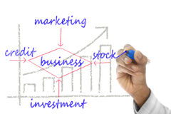 Business structure drawn on wipe board Royalty Free Stock Photography