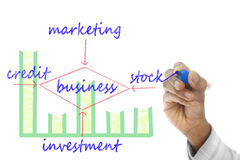 Business structure drawn on wipe board Royalty Free Stock Images