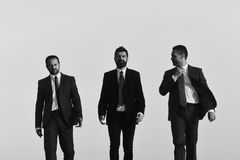 Business succsses. Managers go ahead and talk. Leaders with beard. And smiling faces discuss project. Business and success concept. Board of businessmen wear Royalty Free Stock Photos