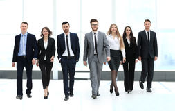 Business team, businesspeople group walking Stock Images