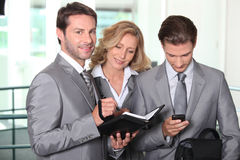 Business team checking diary Royalty Free Stock Image