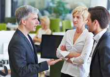 Business team communication in the office. With elderly businessman talking Royalty Free Stock Image