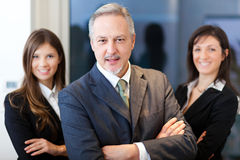 Business team: group of businesspeople Stock Images