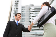 Business Team Handshake Royalty Free Stock Photos