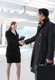 Business Team Handshake Royalty Free Stock Photo