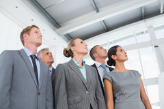 Business team looking up Stock Image