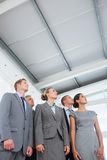 Business team looking up. In the office Royalty Free Stock Photo