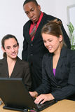 Business Team in Office Royalty Free Stock Photography