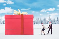 Business team pull a big presents box Royalty Free Stock Image