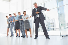 Business team pulling the rope Royalty Free Stock Images